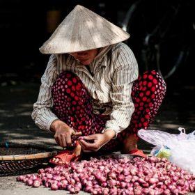 Vietnami konyha